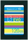 Фото Team Group L3 Evo 120 GB (T253LE120GTC10)