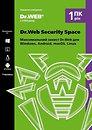 Фото Dr.Web Security Space Версия 12.0 для 2 ПК на 2 года, Картонный конверт (KHW-B-24M-2-A2)
