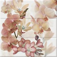 Фото Absolut Keramika декор-панно Orchides Composicion Marron 45x45 (комплект 3 шт)