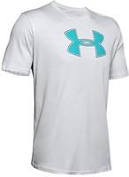 Фото Under Armour футболка Big Logo (1329583)