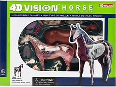 Фото 4D Master Лошадь Анатомия животных (26101)
