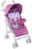 Фото Baby Care Walker (прогулочная)