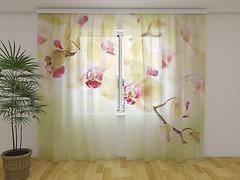 Фото Wellmira Тюль Золотистые орхидеи 260x250