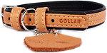 Фото Collar Классический Soft 27-36 см / 15 мм коричневый (7189)