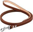 Фото Collar Поводок классический 1.22 м / 10 мм коричневый (04436)