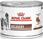 Фото Royal Canin Recovery 195 г